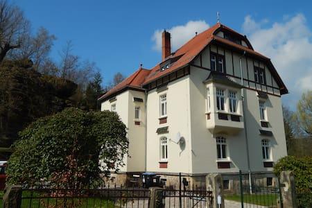Jugendstilvilla Rosenthal - Rosenthal-Bielatal - 度假屋
