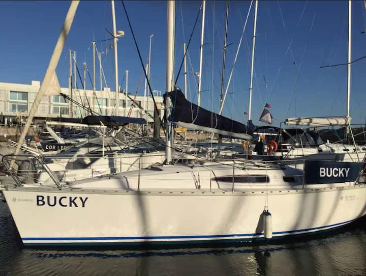 Belém, Bed & Bucky - Boat