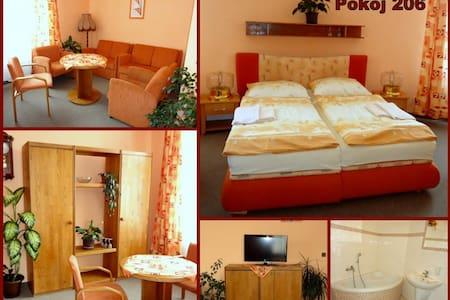 Lovely Family Hotel near Brno - Tišnov