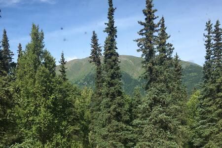 Nordic Ski Village #1 Government Peak Hatcher Pass