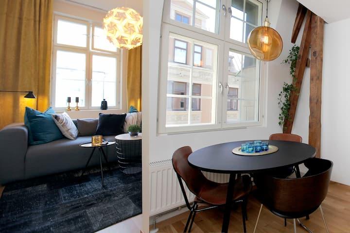 Delicate apartment Kvadraturen - historic district