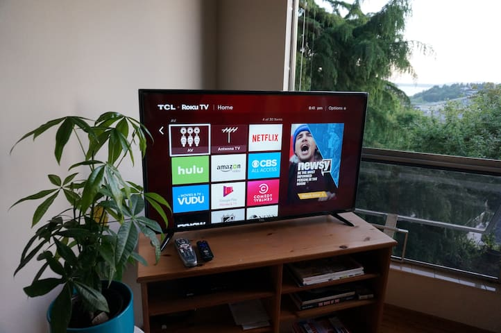 Roku TV with Hulu, Netflix and basic cable included.