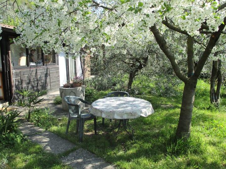Paradiso Piccolo- Ruhe und Natur geniessen