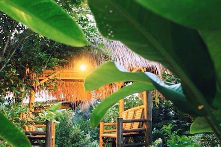 Final Land Resort Chiangdao. - Chiangmai - Çatı Katı