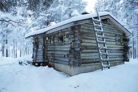 Cozy wilderness log cabin with sauna