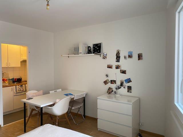 Studio au centre de Genève (Plainpalais)