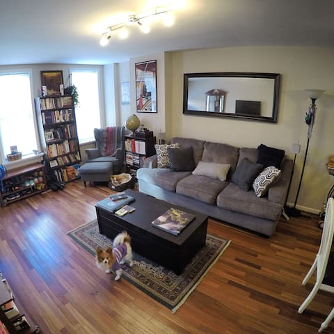 Inviting South Philly room /private
