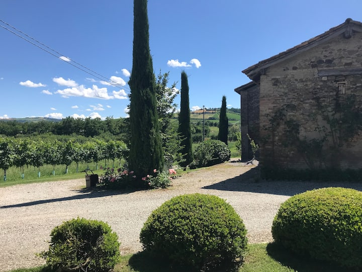 Suite nella valle dei ciliegi a Vignola