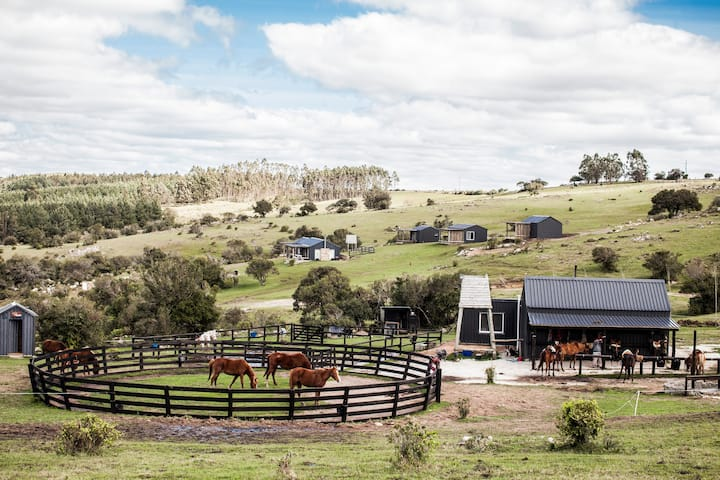 Las Tordillas Lodge and Horse Ranch