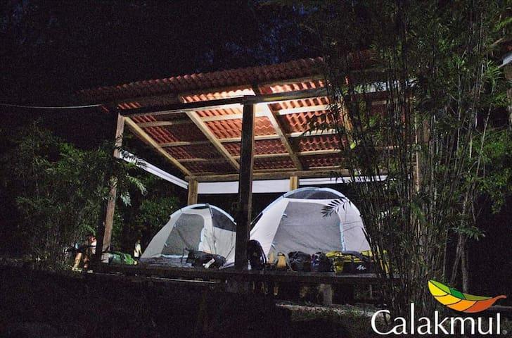 La Raíz del Futuro- Camping en la selva