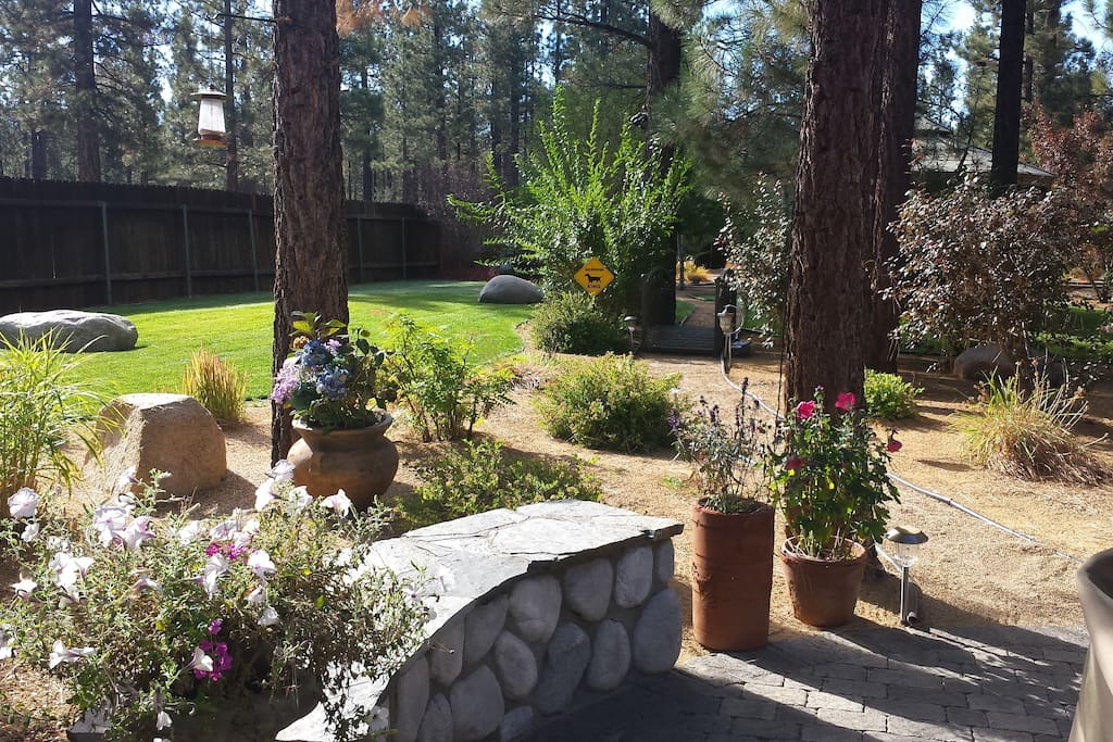 Rock benches and back yard