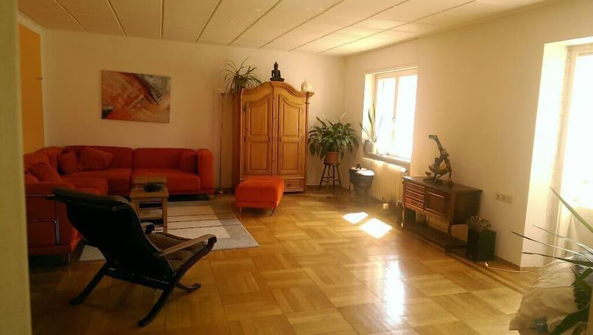 Schöne helle Wohnung im Zentrum - Freiburg im Breisgau - Apartment