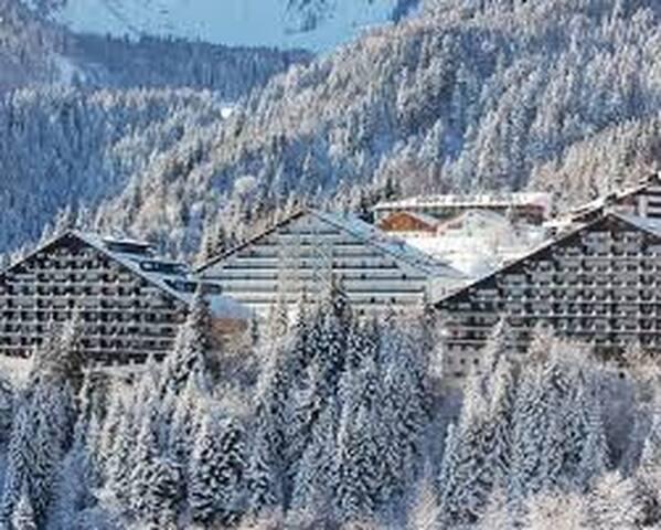 Capodanno (28-12 / 4-1)  5 P/L Torgon  Svizzera