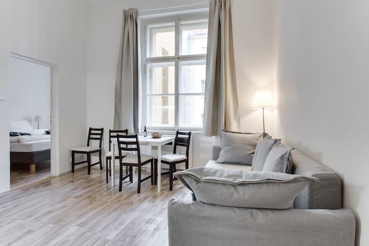 Bright apartment in Center Vinohrady