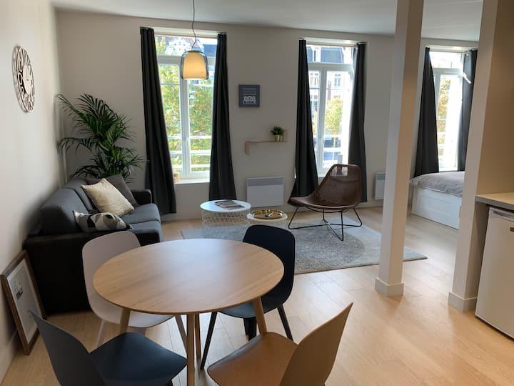 Chaleureux appartement rénové