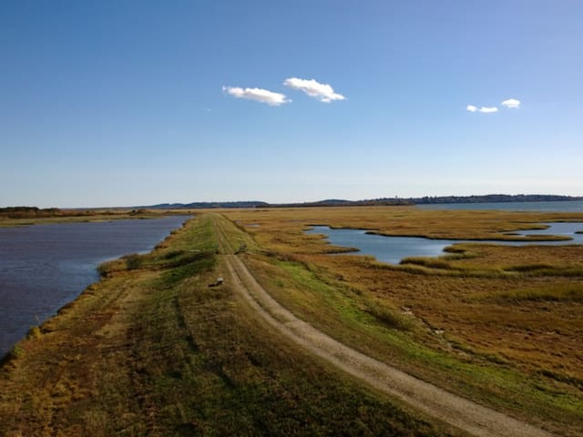 Parker River National Wildlife Refuge is comprised of more than 4700 acres of diverse habitats including sandy beach and dune, cranberry bog, maritime forest and shrub land, and freshwater marsh.