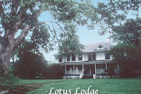 Lotus Lodge B, 12 min from AVL - Candler - Rumah
