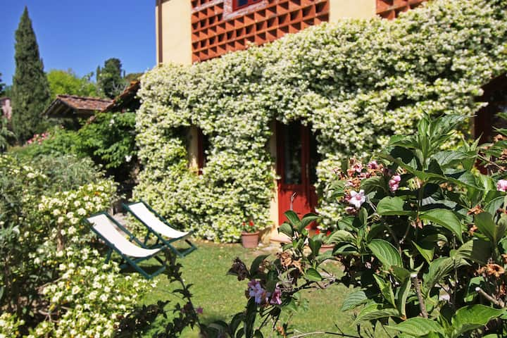 Private house in agriturismo - 6pax with pool