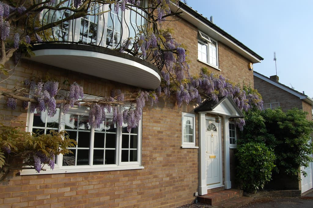 Room To Rent In Bookham Surrey