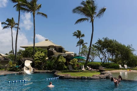 Reduced,  special deal at $109 all fees included - 리휴(Lihue)