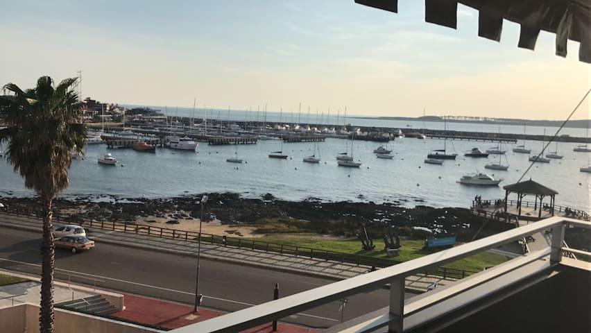 Espectacular vista del puerto de Punta del Este