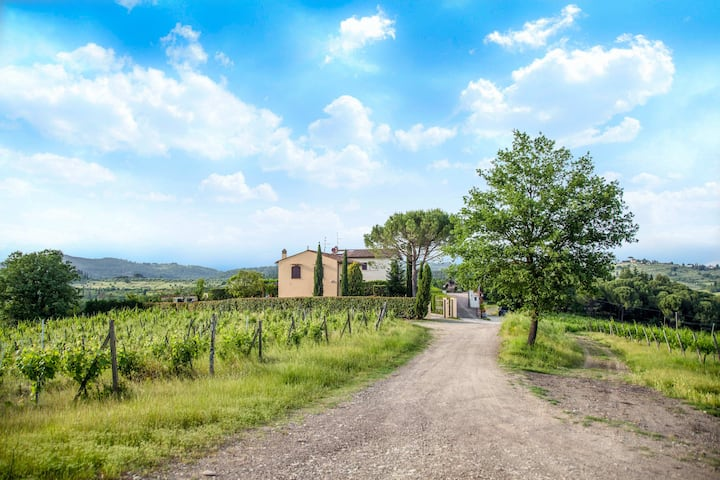 Il Vigneto: cottage in the vineyards near Florence
