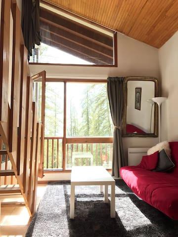 Grand Studio fonctionnel et équipé Valberg village