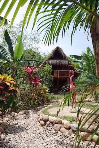 Welcome to casita Moringa! View of the garden and the house.