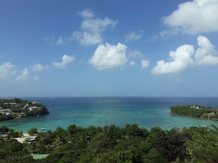 Bleu Caribbean 1B