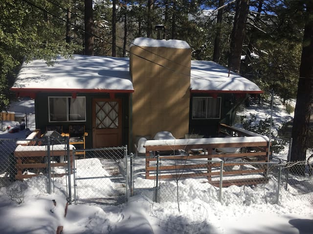 Idyllwild Cabin in the Clouds