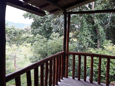 Natura Garden Lodge