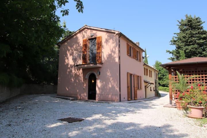 Bauernhaus mit Schwimmbad, schöne Aussicht, zwischen Weinbergen und Olivenhainen