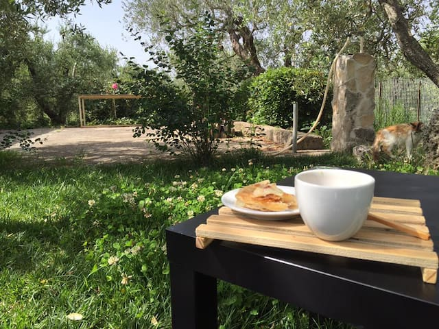 Villa Barney - Gravina in Puglia - Willa