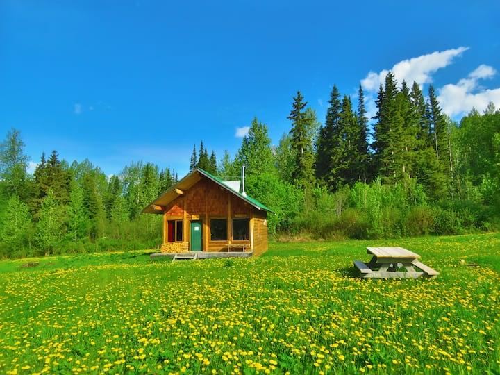 Hummingbird Cabin at Rocky Ridge Resort