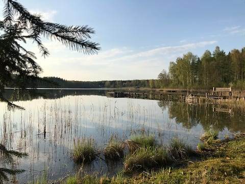 Cabin of Forest Serenity / Miško ramuma
