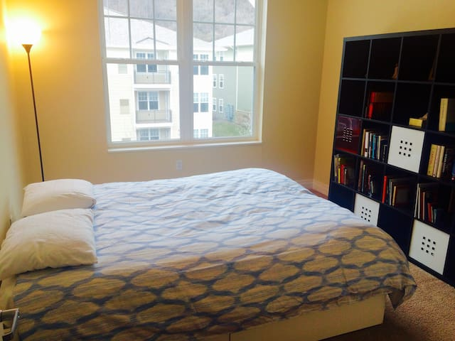 2 Private bedroom & bathroom or entire apartment - Pittsburgh - Kondominium