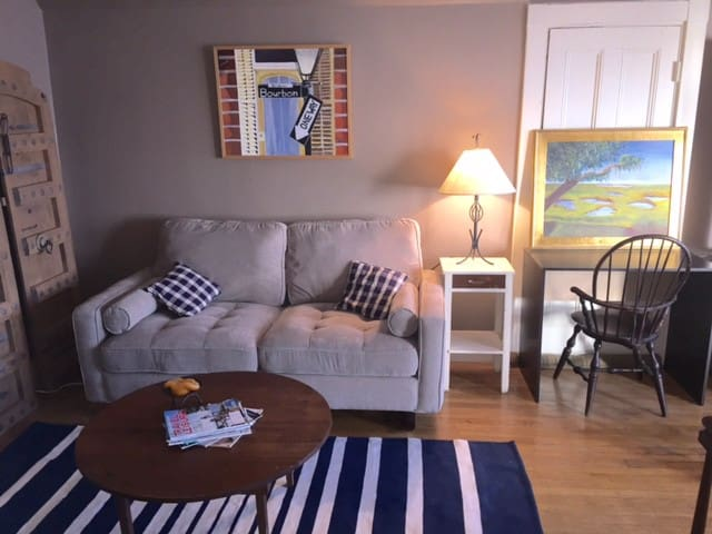 Comfortable 1 BR steps from public transportation - Boston - Byt
