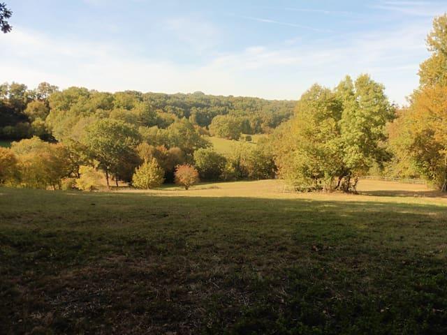 grande cabane en pleine nature toute commoditées - Laroque-Timbaut - Домик на природе