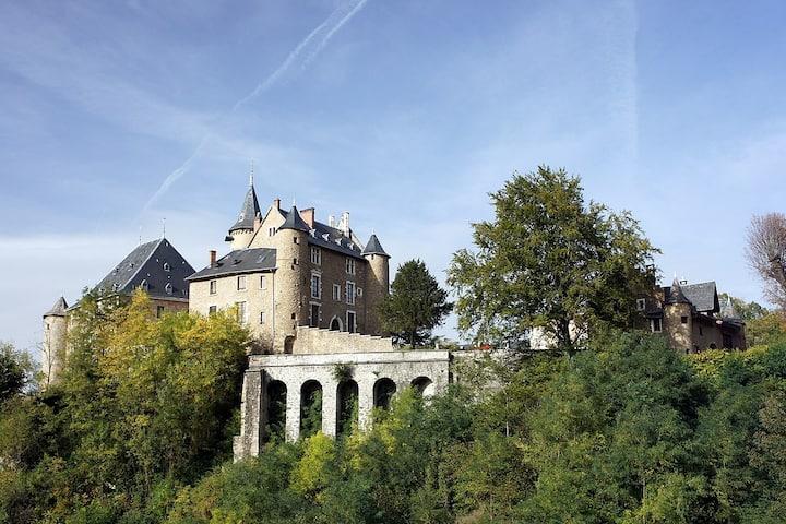 Château - Chambre et salle de bain privée