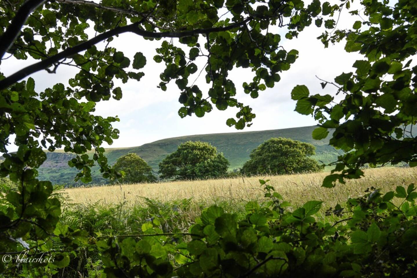 ....Hidden away at the foot of Little Black Hill....
