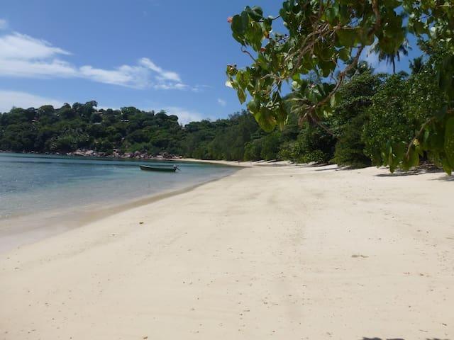 Beach house with sprawling garden - Praslin  - Vila