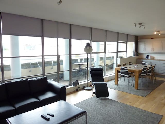 Double ensuite Room in Temple Bar Penthouse - Dublin - Appartement