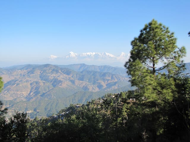 Kasar Holiday Home - Almora - Daire