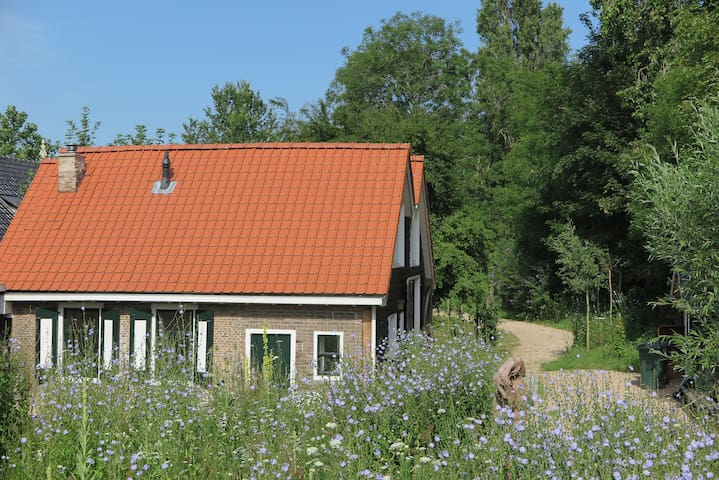 Het Kunstenaarshuis in grote, bijzondere tuin