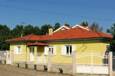 Casa Velha vinha - Valença