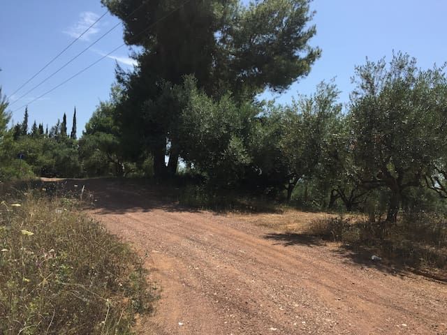Entrance to Vounaki Farm from the National Road