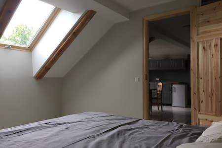 Cozy loft with fireplace in center of Viljandi