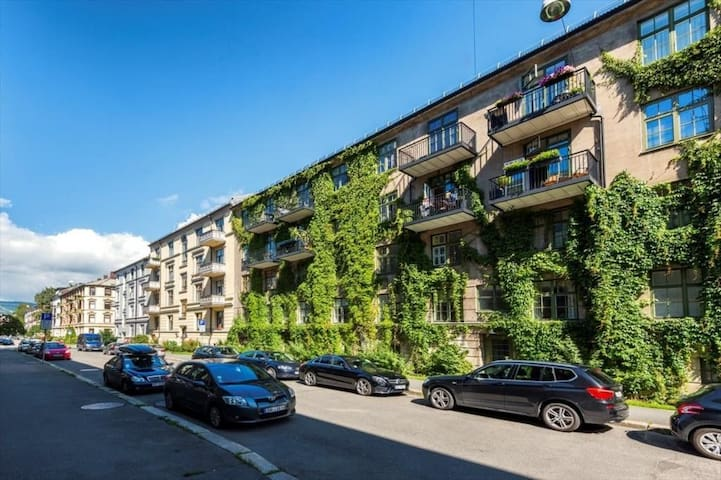 Clean and spacious appartment in central Oslo - Oslo - Appartement