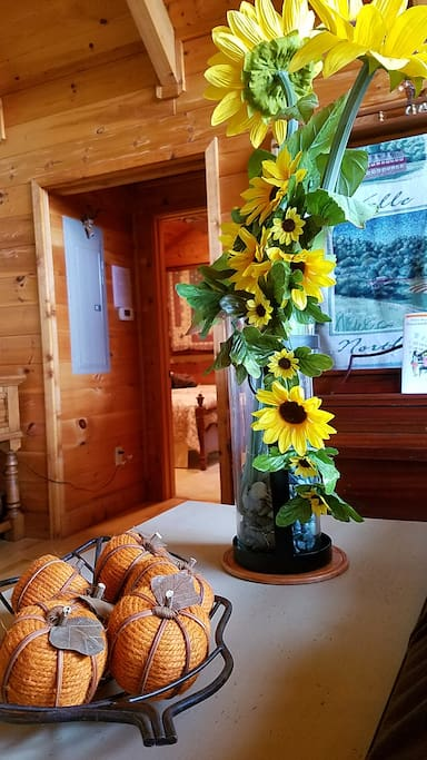 Touch of fall at our cabin!