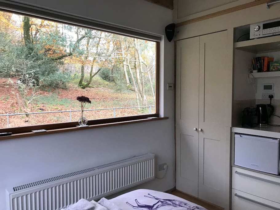 Room with an Autumn view!